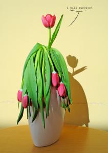Rady pro větší výdrž řezaných květin