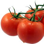 zelenina rajče