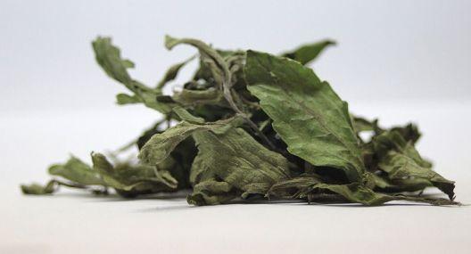 Zázračné sladidlo - sušené listy stévie sladké