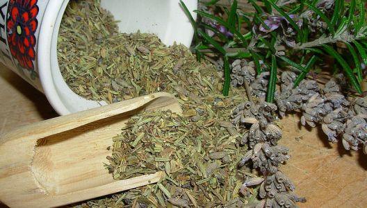 Drobné bylinky usušíte i v sušičce na ovoce.