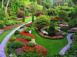 co muze clovek pestovat na zahrade