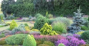 jak muze prekrasne vypadat nase zahrada v lete